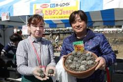 20170225-hana-ichiba-002