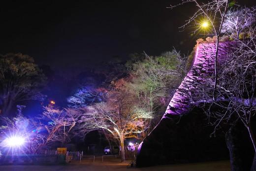 城山ライトアップ「ワイワイ花宵物語」