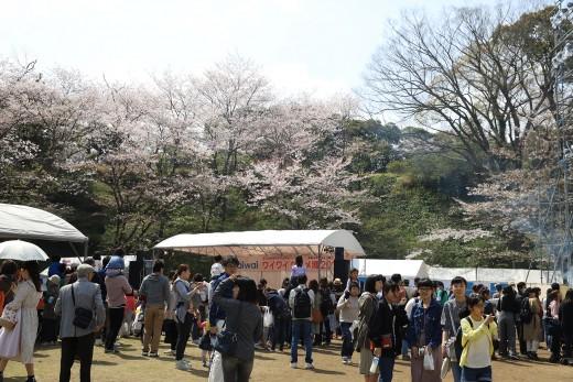 20180331_shiroyama_18
