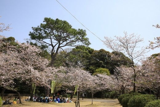 20180331_shiroyama_21