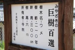 20190124_kaika_01
