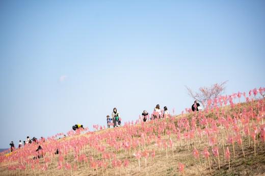 20130223_konohana_00-91