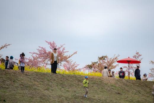20130224_konohana_00-12